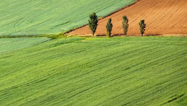 קרקע חקלאית ותקן 22
